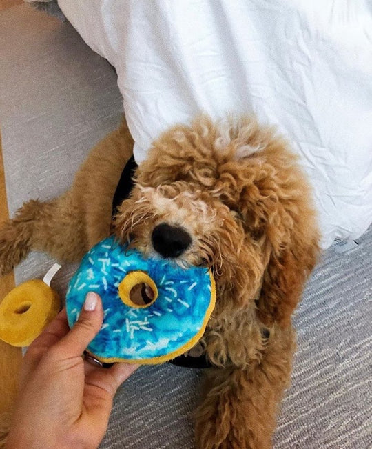 Mmm.. Squeaky Donut