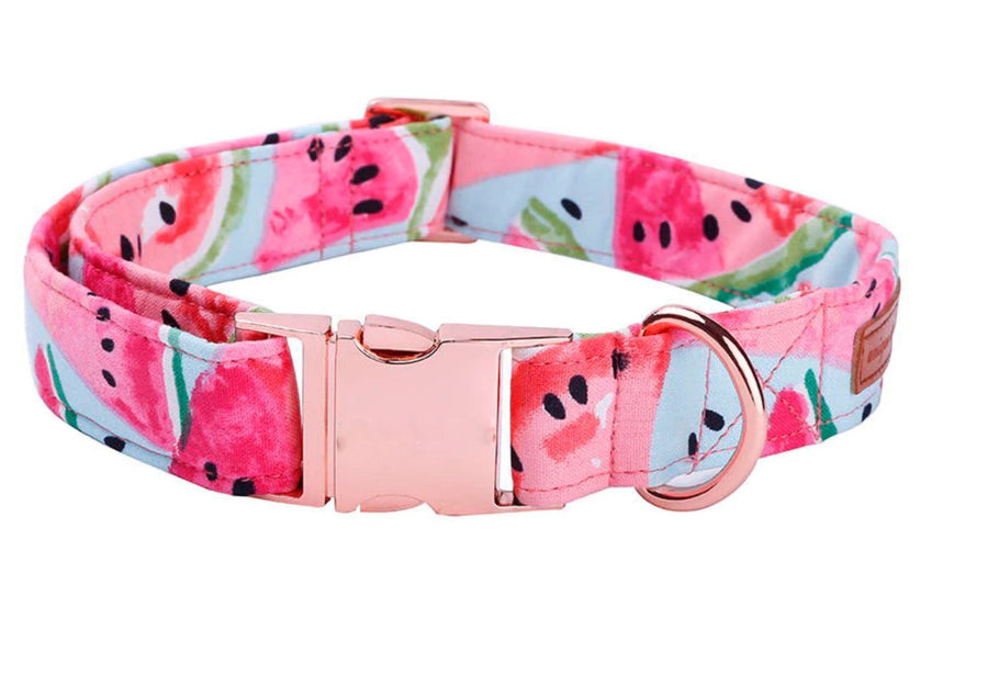 Doggie Trends collar collar with bowtie / XS 8
