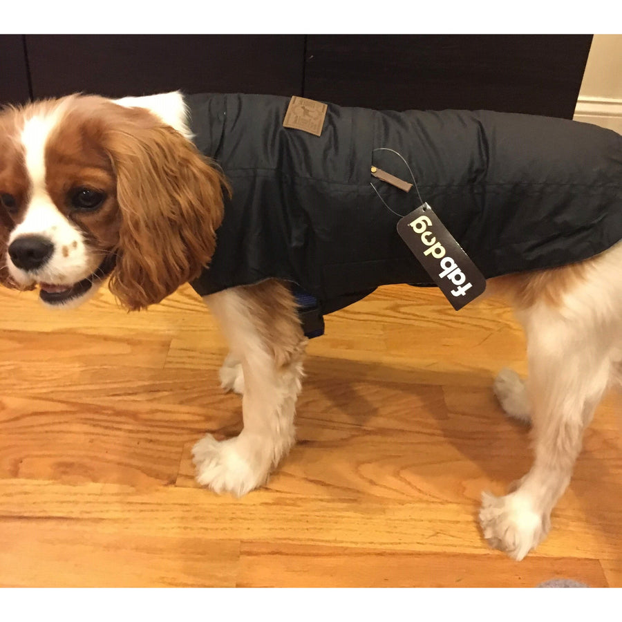 Doggie Trends Nyc Black Weatherproof Utility Water-repellent Dog Coat