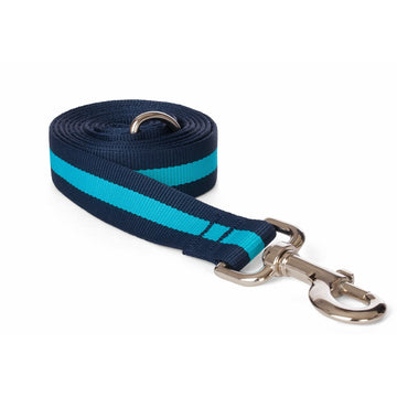 Doggie Trends Nyc Blue Stripe Dog Leash