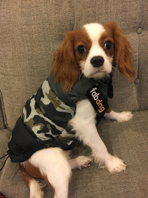 fabdog Coat Camo Colorblock Dog Puffer Jacket