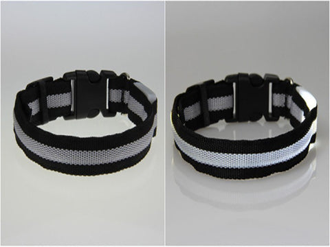 Image of BritePup LED Pet Safety Collar