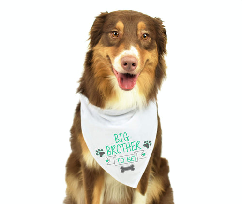 Big Brother Dog Bandana
