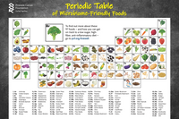 Poster - Periodic Table of Microbiome-friendly Foods