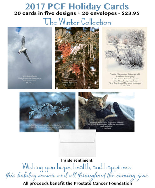 HALF PRICE! 2017 Holiday Cards