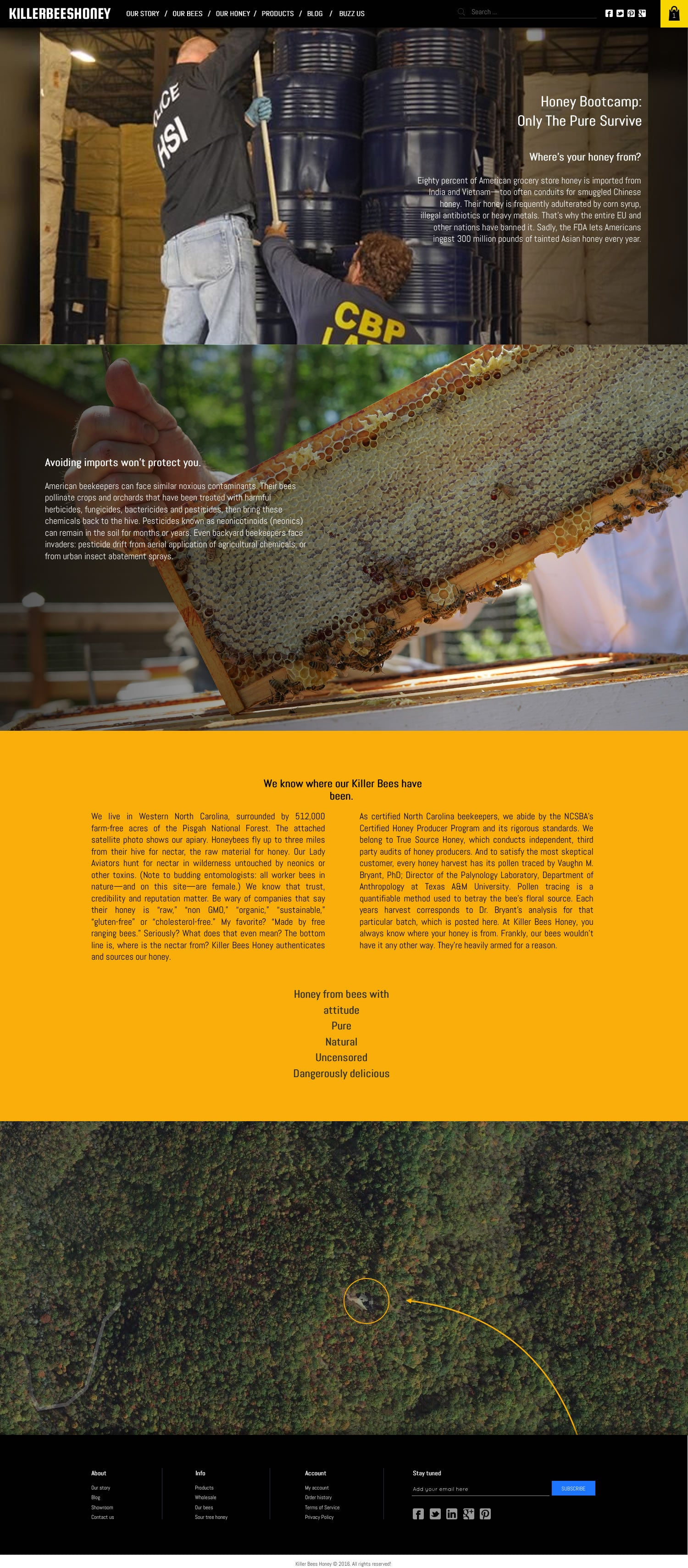 killerbeeshoney ecommerce shopify website for honey retailer