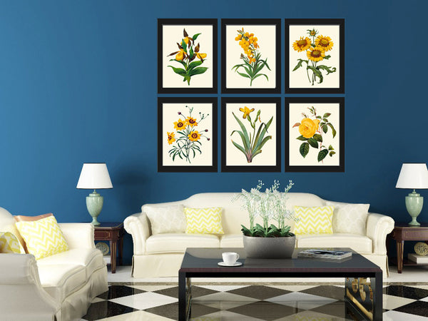 Botanical Print Set of 6 Art  Redoute Antique Beautiful Yellow Lady's Slipper Blanket Flower Coreopsis Iris Rose Daisy Home Wall Decor