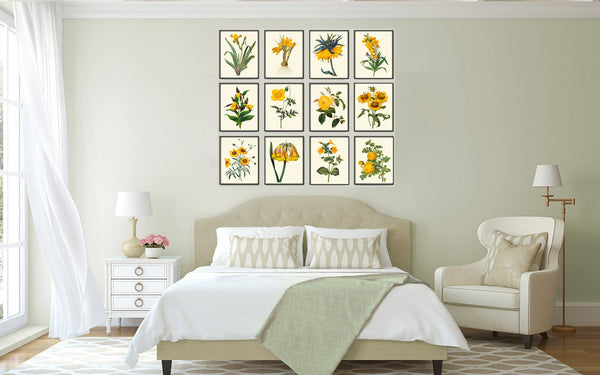 Botanical Print Set of 12 Art  Redoute Antique Beautiful Yellow Flowers Tropical Bedroom Living Dining Room Staircase Home Wall Decor