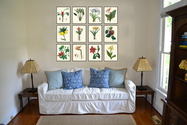 Botanical Tropical Flower Art Print SET of 12 Art  Redoute Antique Living Dining Room Bedroom Kitchen Hallway Home Wall Decor to Frame