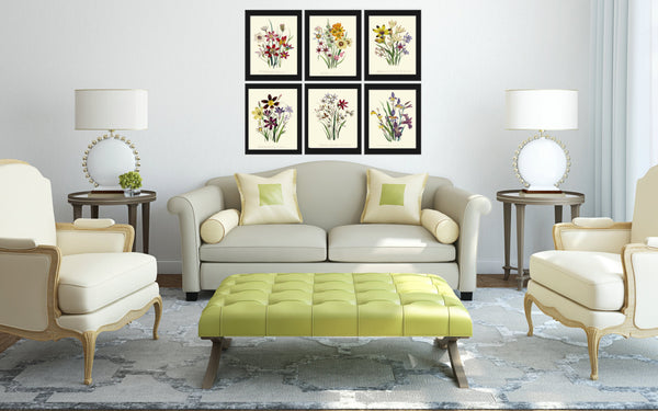BOTANICAL Print SET of 6 Art Print Loudon Antique Wildflower Flowers Yellow Purple Green Summer Plant Nature to Frame Home Wall Decor Garden