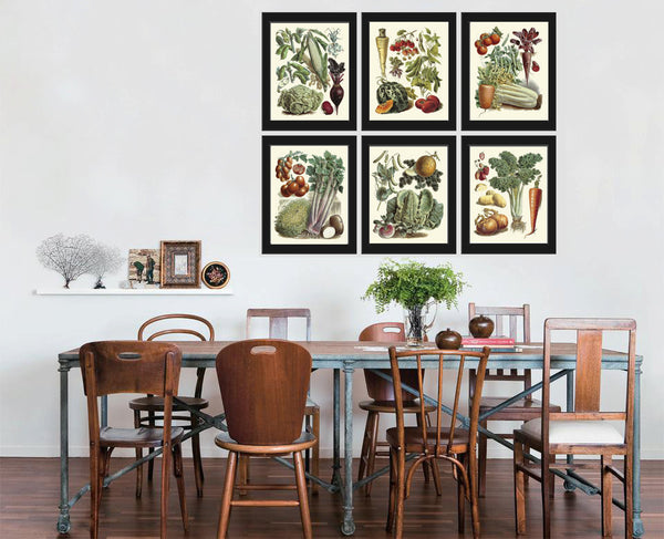 Botanical Vegetable Print Set of 6 Art  Redoute Antique Beautiful Carrot Cabbage Tomato Strawberry Onion Kitchen Dining Room Wall Decor