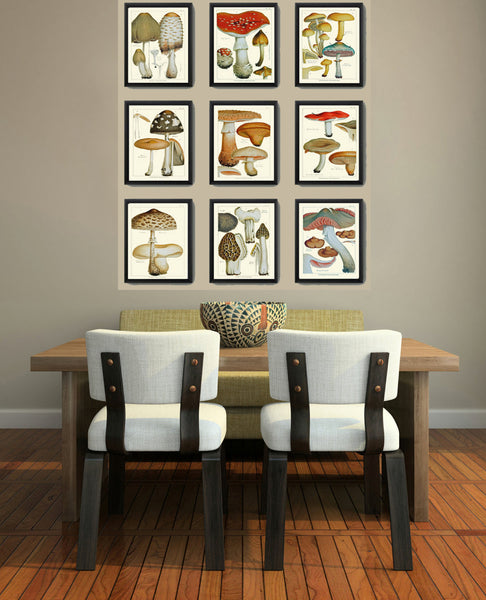 Mushroom Art Print 6 Antique Beautiful Beige Large Fungi Mushrooms Forest Nature Chart Food Cooking Chef Kitchen Dining Home Room Wall Decor