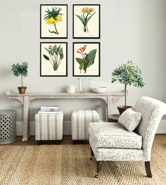Botanical Tropical Flower Art Print SET of 4 Art  Redoute Antique Green Garden Chart Spring Summer Plants Home Room Wall Decor to Frame