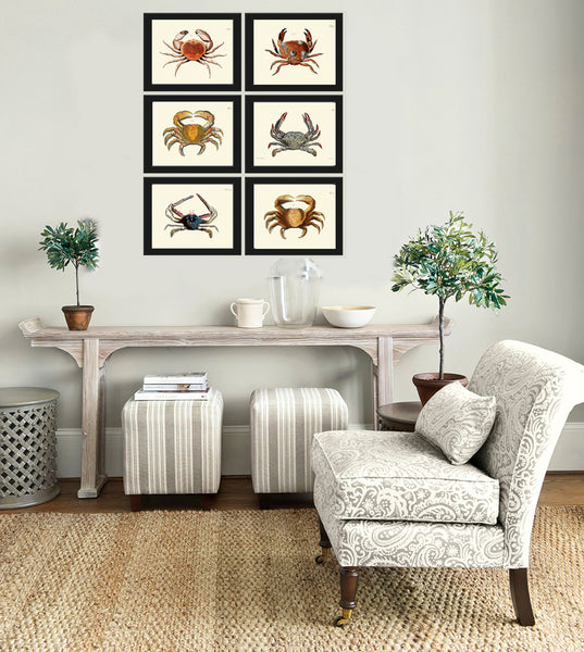 Antique Crab Print Set of 6 Wall Art Decor Beautiful Vintage Illustration Sea Ocean Coastal Marine Decor Bathroom Home Wall Decoration JFWH