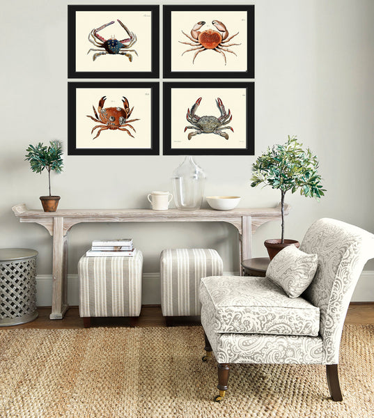 Crab Art Print 15 Beautiful Antique Sea Ocean Nature Beach Home Seaside Nautical Marine Home Room Decor Natural Science Wall Hanging