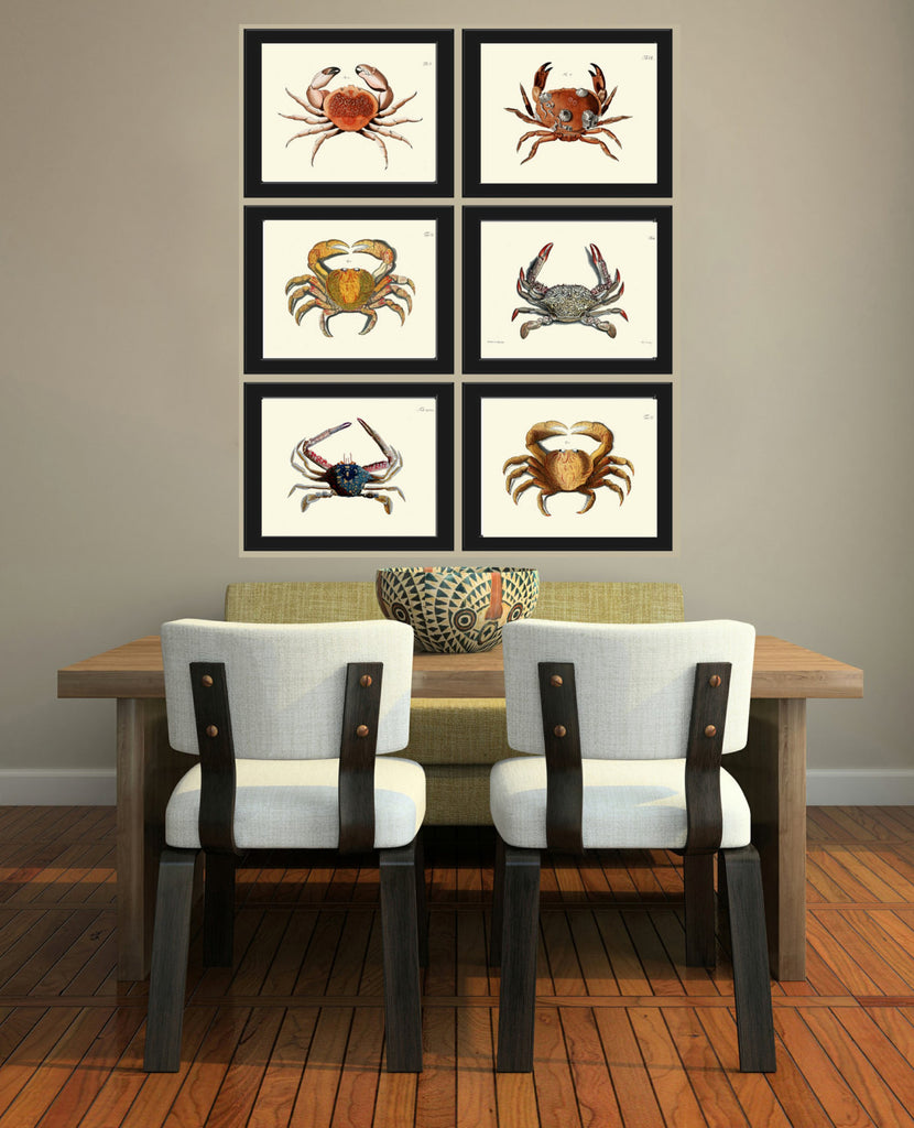 Crab Print 40 Beautiful Antique Sea Ocean Nature Beach Home Vintage Bathroom Bedroom Illustration To Frame