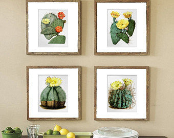 BOTANICAL PRINT  Art Print 10 Beautiful Cactus Yellow Blooming Flowers Plant Tropical Desert Illustration Greenhouse Home Decor to Frame
