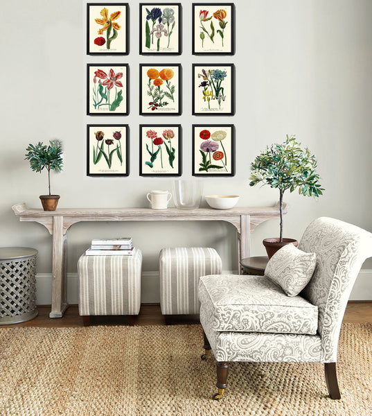 BOTANICAL PRINT  Art Print W29 Beautiful AntiqueTulips Red Flower Spring Summer Garden Plant Chart Nature to Frame Living Dining Room