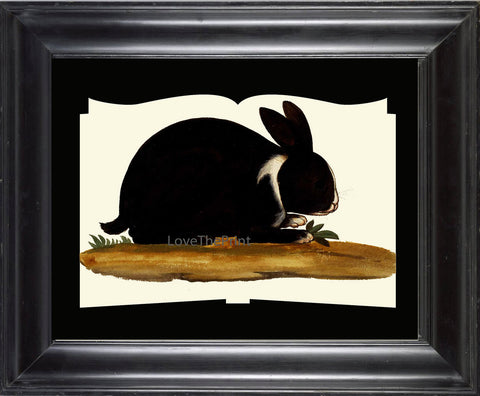 Rabbit Print  Art Print 24 Beautiful Antique Black Bunny Flowers on Ivory Background Book Country French Farm Vintage Home Room Decor