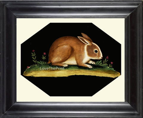 Rabbit Print  Art Print 22 Beautiful Antique Bunny Flowers on Black Background Country Rustic Primitive Nature Farm Home Room Decoration
