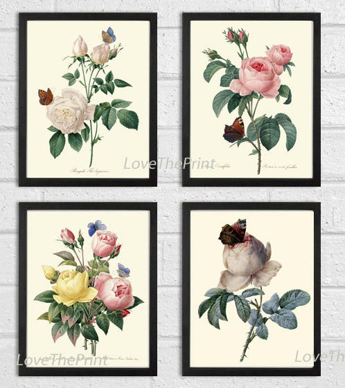 BOTANICAL Print SET of 4 Art Prints  Redoute Antique French Garden White Pink Yellow Roses Butterfly Plants Spring Vintage Home Decor