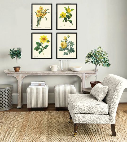 BOTANICAL Print SET of 4 Art Prints  Redoute Beautiful Yellow Narcissus Dahlia Dillenia Rose Rlowers Interior Design Home Wall Decor