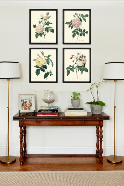 BOTANICAL Print SET of 4 Art Prints  Redoute Antique French White Pink Yellow Roses Garden Plants Vintage Home Room Wall Decor to Frame