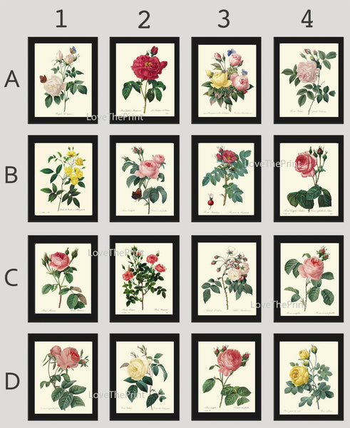 BOTANICAL Print SET of 16 Art Prints Redoute Beautiful French Garden Antique Yellow Pink White Roses Flowers Vintage Illustration Decor