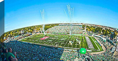 CFL SASKATCHEWAN ROUGHRIDERS 14X28 ART CANVAS - MOSAIC STADIUM