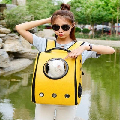 Cat Astronaut Capsule Backpack