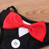 Sophisticated Tuxedo Harness With Leash