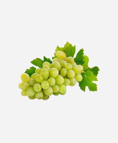 Grapes Green Globe