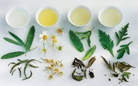 Herbal Teas & Tinctures