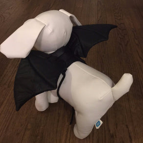 Pet Bat Wings