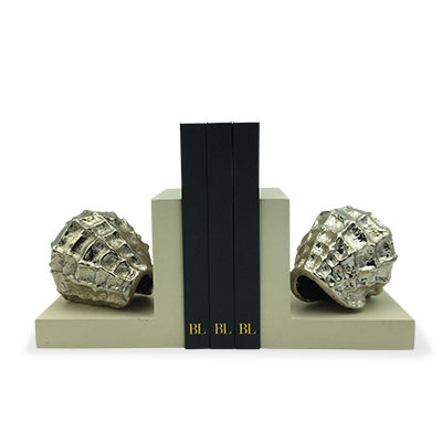 Book End Sea Conch CHAMPAIN