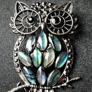Abalone Owl Magnetic Brooch - QB's Magnetic Creations
