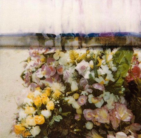 10 holland street fashion photographer and flowers cy Twombly print design