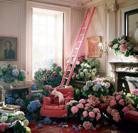 10 holland street fashion photographer and flowers Tim Walker print design