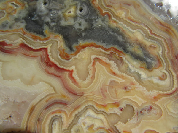 Polished Crazy Lace Agate  CLA219 for Nick M.