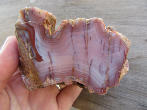 Polished Pilbara Agate PA250