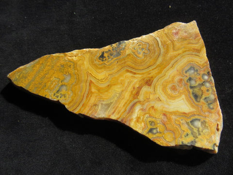 Polished Crazy Lace Agate  CLA223 for Nick