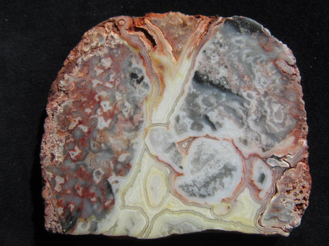 Polished Crazy Lace Agate CLA225