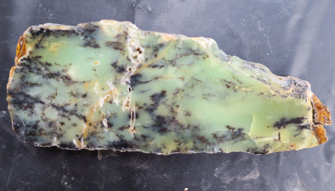 Dendritic Opal Polished Slab.  DOP115