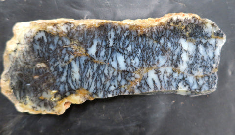 Dendritic Opal Polished Slab.  DOP117