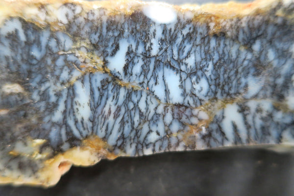 Polished Dendritic Opal DOP1170