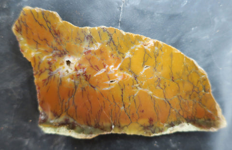 Dendritic Opal Polished Slab.  DOP118