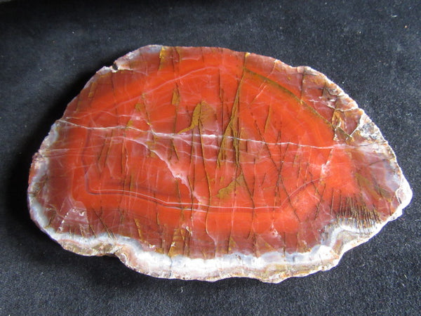 Polished Pilbara Agate PA221