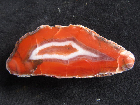 Polished Pilbara Agate PA232