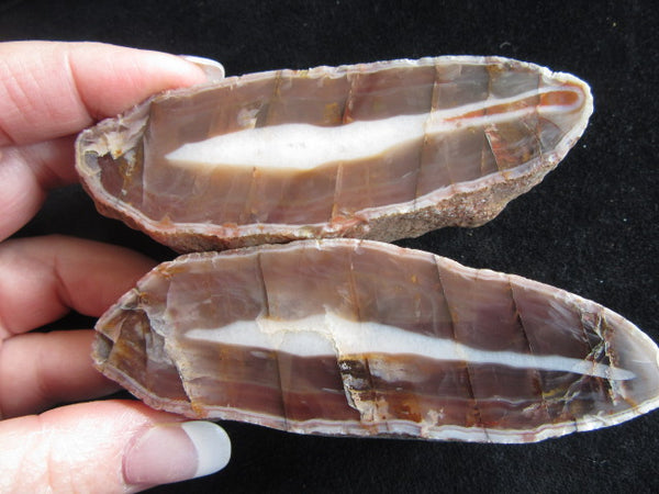 Polished Pilbara Agate PA226