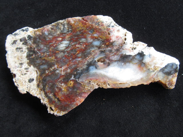Polished Dendritic Opal DO118